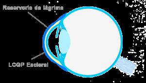 esquema-ojocon-LCescleral-ojo-seco